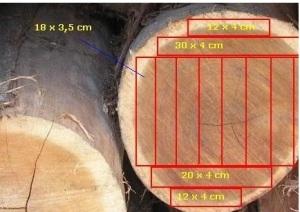 Logs cutting